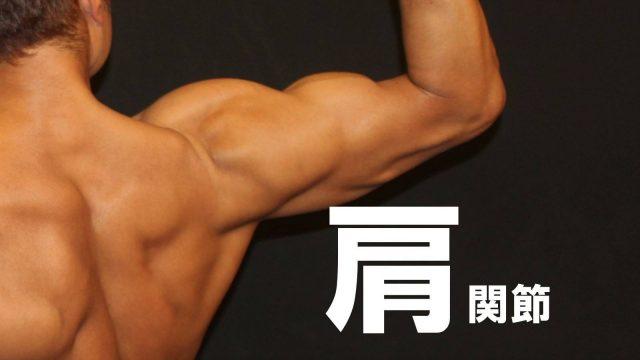 【セミナー情報】第2期 11月21日㈫ 基礎から学ぶ機能解剖学 第2回~肩関節~