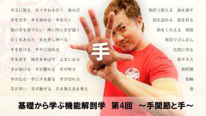 基礎から学ぶ機能解剖学 第4回 ~手関節と手~ @ 東京体育館