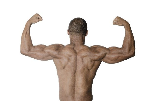 【ワークショップ情報】緊急開催!運動生理学に基づいたトレーニングプログラム