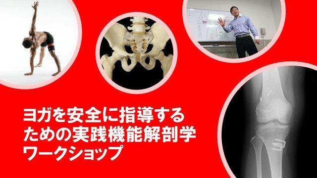 【セミナー情報】ヨガを安全に指導するための実践機能解剖学ワークショップ